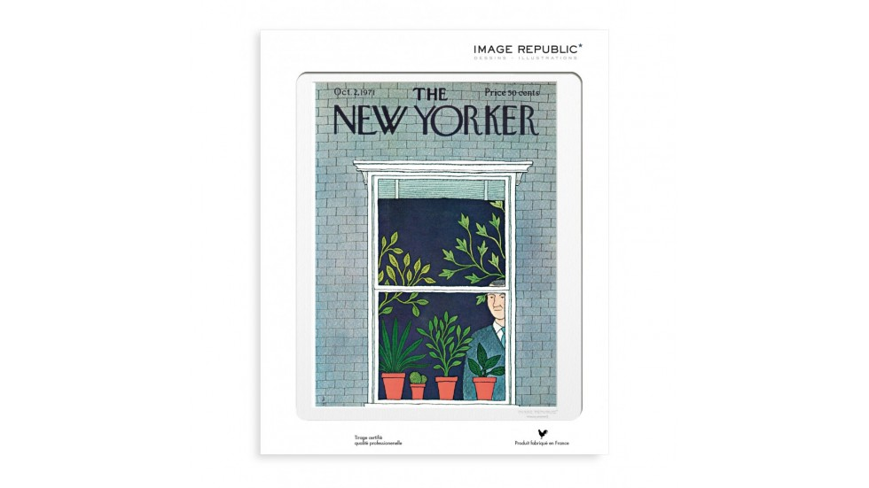 COLLECTION THE NEW YORKER- LE TAN MAN & POTTED